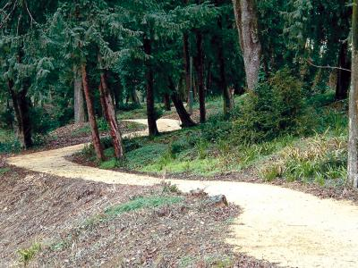 Cycle-pedestrian path inside a park laid through a paver finisher machine